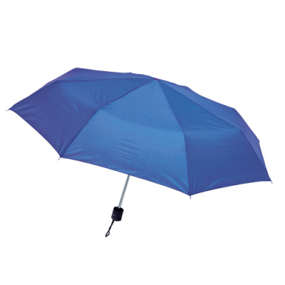 Image of Umbrella Mint
